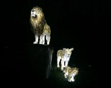 lion-lantern
